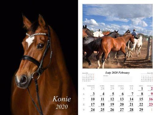 Radwan Kalendarz 2020 Konie 13 planszowy RADWAN