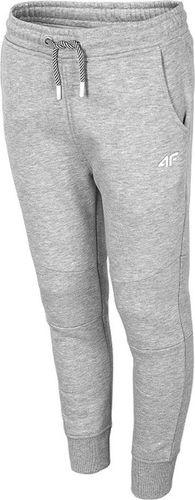 4f Spodnie 4F HJL20-JSPMD004B 24M HJL20-JSPMD004B 24M szary 128 cm