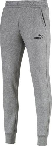 Puma Spodnie męskie Ess Logo Pants Fl szare r. XXL (85175303)