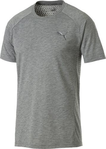 Puma Koszulka męska Evostripe Move Tee szara r. M (85407103)