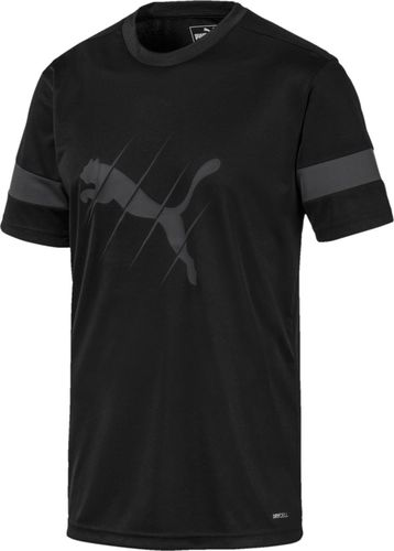 Puma Koszulka męska Ftblplay Logo czarna r. M (65646706)