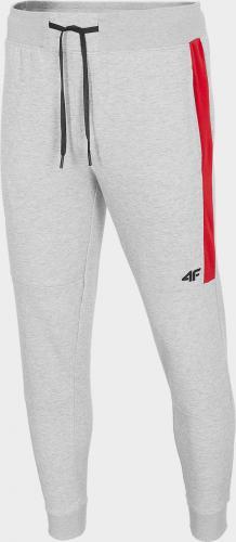 4f Spodnie męskie H4Z20-SPMD014 szare r. L