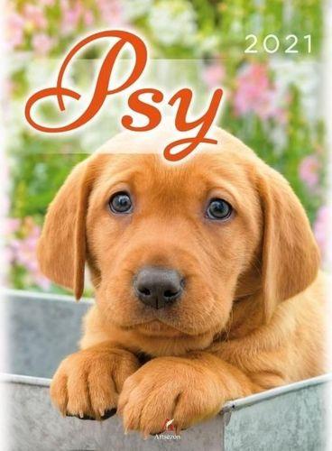 Artsezon Kalendarz 2021 Ścienny Psy ARTSEZON