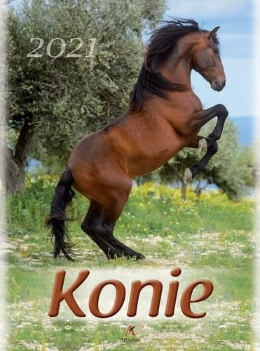 Artsezon Kalendarz 2021 Ścienny Konie ARTSEZON