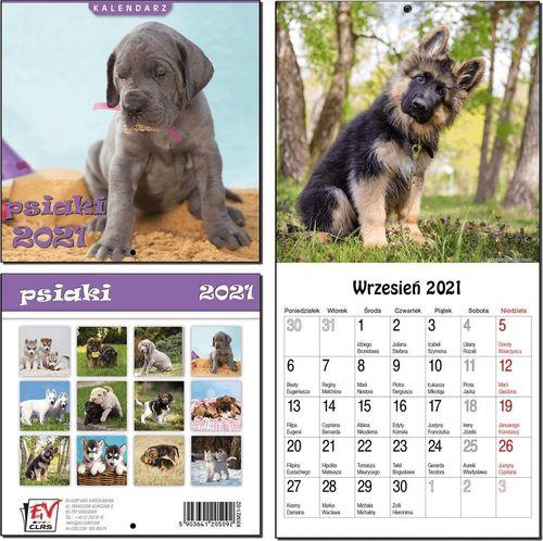 EV-Corp Kalendarz 2021 13 Plansz 16x16cm Psiaki EV-CORP