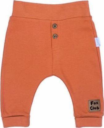 NICOL Spodnie dla chłopca Nicol Fox club 86