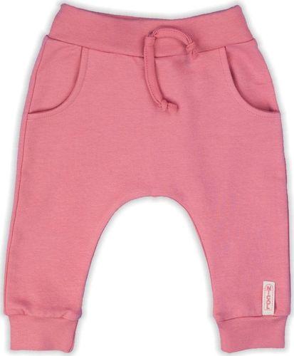 NICOL Spodnie dresowe Forest Nicol różowe 104