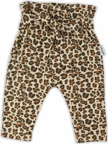 NICOL Spodnie spodenki bawełniane ''Mia'' Nicol 86