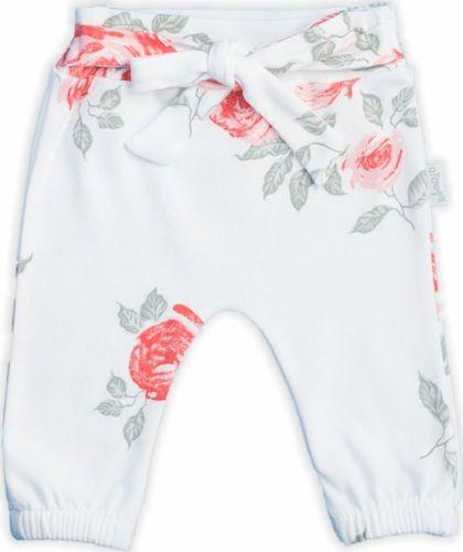 NICOL Spodnie spodenki bawełniane ''Róża'' Nicol 86