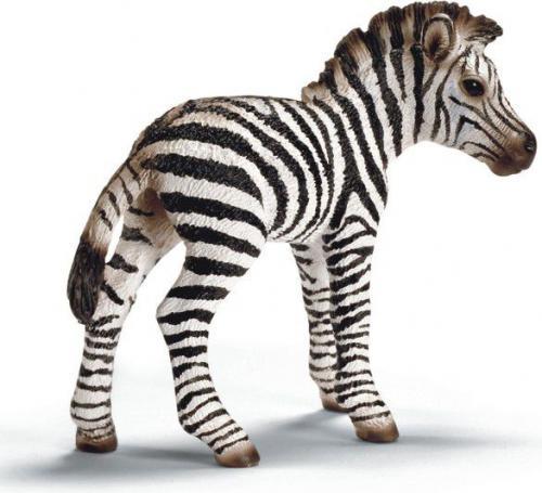 Figurka Schleich Zebra Źrebię (14393)