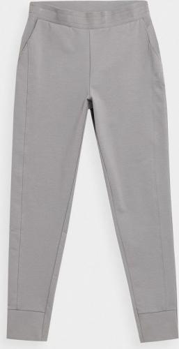 4f Spodnie Damskie H4z21-spdd012 Szary R. L