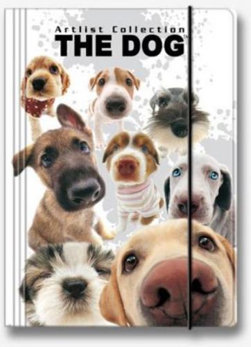 Derform Teczka z gumką A4 The Dog (DERF.TGA4TD)