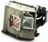 Lampa MicroLamp do Acer,  300W (ML10083)