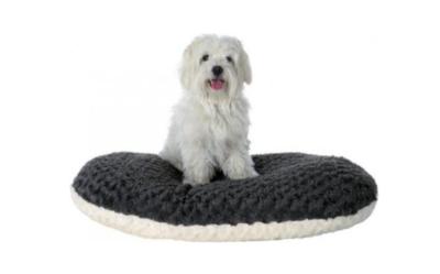 aa4d0c337c30b3 Poduszka – legowisko dla psa. Jaki model wybrać dla czworonoga? -  wiadomości w Morele.net
