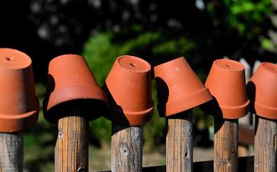 Doniczki Ceramiczne Jakie Wybrać Które Będą Najlepsze