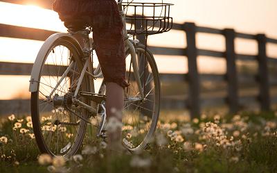 Rolki czy rower - co daje lepsze efekty?