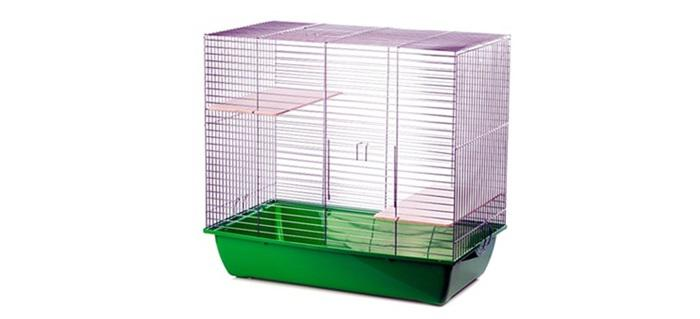 Jaką Klatkę Dla Szczura Kupić Która Klatka Będzie Najlepsza